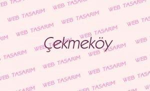 Çekmeköy Web Site Tasarım