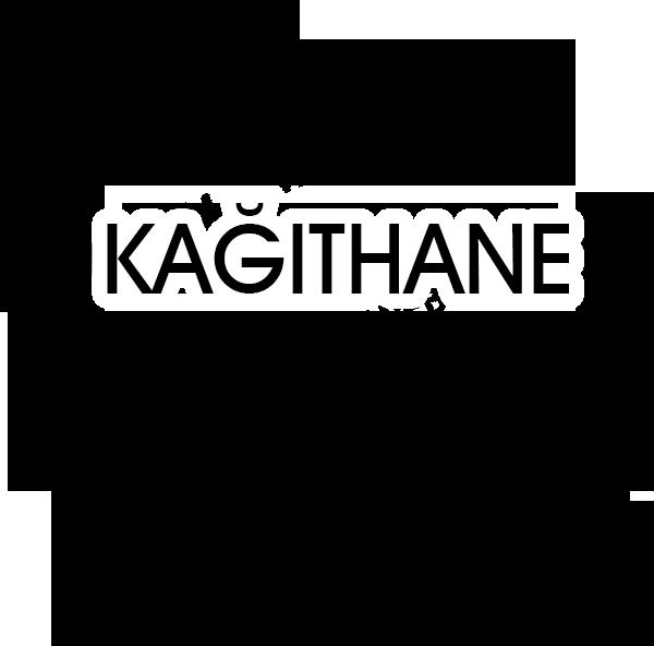 Kağıthane web site firması