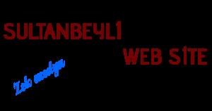 sultanbeyli-web-tasarim